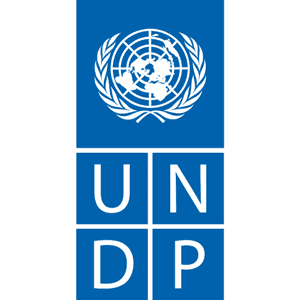 UNDP-mobile-application-development-company